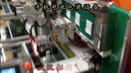 武汉拓利自动化---电池输送包装设备打包设备