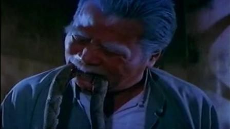 一部香港的恐怖片人蛇大战, 豆瓣评分7.6 , 蛇王带领小蛇复仇
