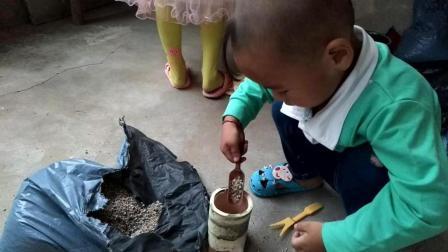 马库斯多肉老庄种植教程视频 多肉植物2017