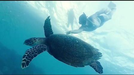 旅行短片 | 菲律宾-宿务Cebu
