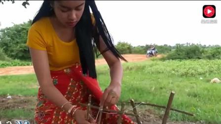 柬埔寨乡村美女手活真好, 用一个简单的装置, 捕获了一个野生的美味