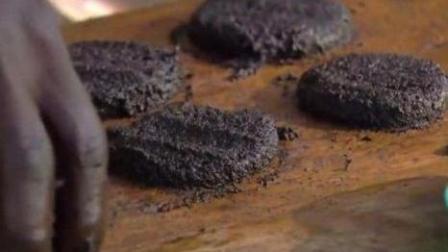50万只蚊子做成汉堡? 营养竟是牛肉7倍! 非洲兄弟的黑暗料理