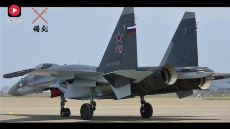 中国空军再受优待, 20架苏35战斗机之后大礼不断, 日方最关心