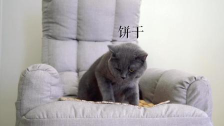 一只做曲奇的猫, 只为博得剥蒜小妹的芳心