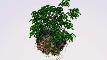 C4D植物生长插件 19 悬浮石