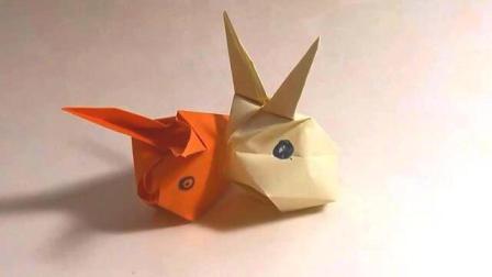 小兔子 16