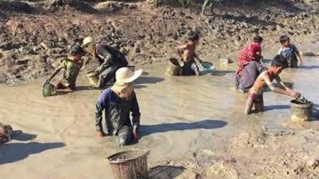 农村老汉把蓄水池的水抽干, 村里老老少少全体下去摸鱼, 好欢乐!