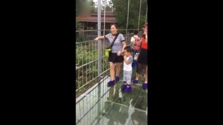 母子俩走玻璃桥, 妈妈一步一哆嗦儿子超淡定
