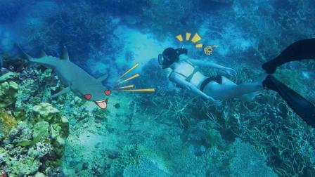 """全球十大潜水圣地 在""""神的水族箱""""记录鱼群风暴 美到窒息 98"""