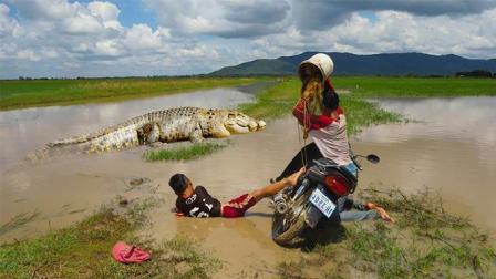 两兄弟骑摩托车去捕鱼, 河里突然浮出一条大鳄鱼, 太可怕了!