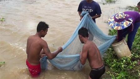 农村大叔出水口捕鱼, 方式简单, 收获满满!