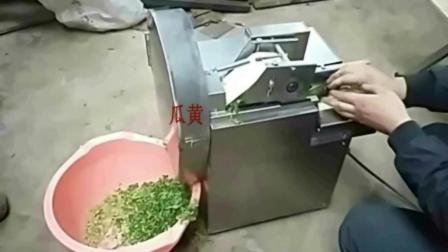 我爱发明周口切菜机视频 小型切菜机价格及图片 切丁机 切片机切菜机视频视频