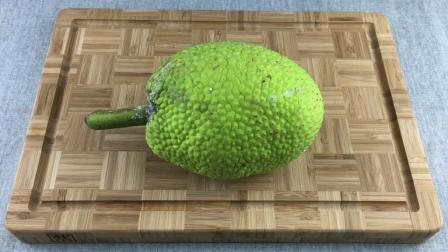"""可以烤着吃的水果, 也是许多热带地区的主食, 名字叫""""面包果""""!"""
