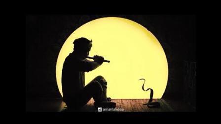 让眼镜蛇跟着节奏跳舞可不是一般的事啊