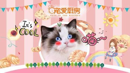 宠爱厨房 第一季 布偶猫手把手教你做猫咪爱吃的羊奶芝士饼干