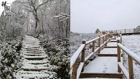 【整点资讯】北京下雪了 环卫工背学生过马路