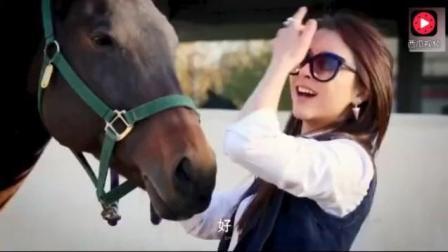 美女问驯兽师, 你每天看着马交配, 你会不会有一股冲动啊!