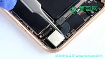 iPhone8拆机换后置摄像头教程苹果8内部结构-草包网