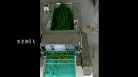 我爱发明连云港切菜机视频 小型切菜机价格及图片 切丁机 切片机切菜机视频厂家直销