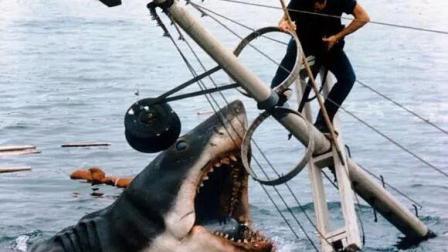 一部时隔18年经典恐怖片, 鲨鱼吃人画面至今看了依旧让人瑟瑟发抖