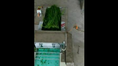 包子皮视频西双版纳切菜机视频 小型切菜机价格及图片 切丁机 切片机切菜机视频厂家