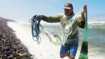 国外老汉海边追着鱼群撒网打鱼, 这浪花实在骇人