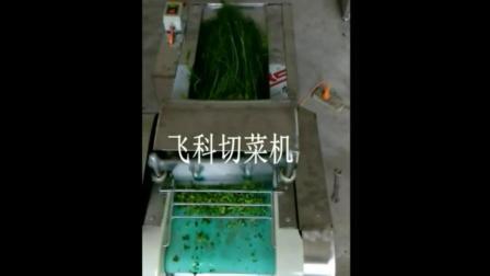 饺子皮视频襄樊切菜机视频 小型切菜机价格及图片 切丁机 切片机切菜机视频价格