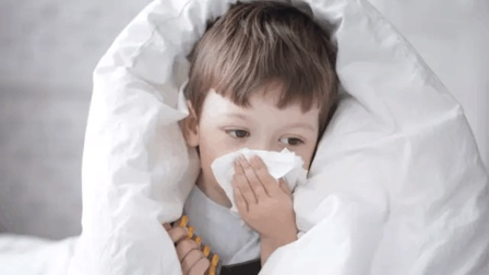 一换季感冒咳嗽多 家里菜地里的这种蔬菜 煮汤喝祛痰止咳防感冒