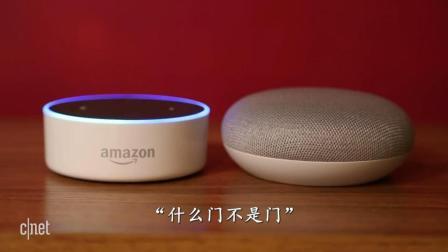 两大人工智能助手终极PK, 谷歌Home mini VS亚马逊Echo dot