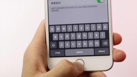 解释: 盗取 iPhone 密码
