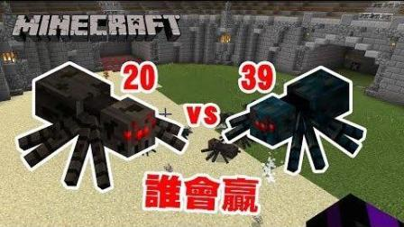 我的世界 兽斗竞技场 - 蜘蛛 vs 洞穴蜘蛛 谁会赢