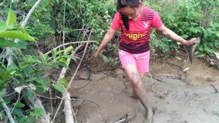 农村水渠肥鱼多, 小姑娘舀舀水, 15分钟抓了半桶鱼