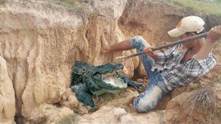 小哥野外挖螃蟹见洞就挖, 洞口捡了个蛋, 竟还抓获了一只大家伙