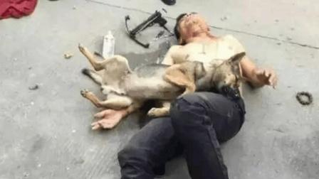 偷狗贼被自己的毒针射中死亡, 监控拍下他自取灭亡的20秒
