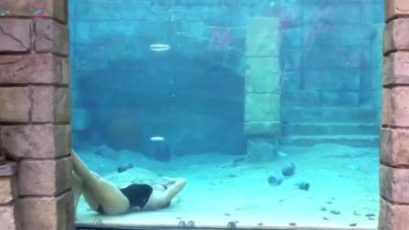 世界上最深的游泳池: 深40米游一次2000元, 却吸引无数游客?
