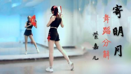 【紫嘉儿】寄明月❀舞蹈分解教学❀单人改编❀镜面教程