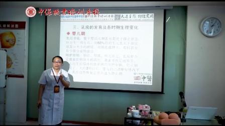 产后康复—乳腺结构乳房相关基础知识—中保职业培训学校01