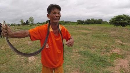 野生蛇非常凶猛, 老汉抓住的一瞬间, 吓得呜呜叫, 最后放蛇归山