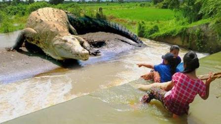 三个农村女孩深水网鱼, 发现网里有异物, 拉上岸一看, 吓死了!