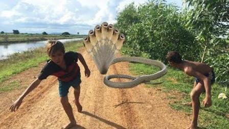 2个农村男孩去郊外收鱼笼, 突然路中杀出一条大货, 结果太悲剧了