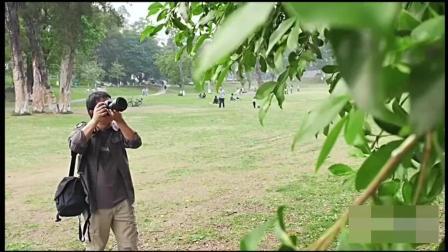 单反相机的使用技巧, 苹果手机摄影教程视频教程全集