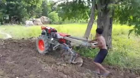穷人孩子早当家, 小男孩开拖拉机耕地, 突然翻出一条大蛇, 太可怕了