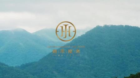 【青禾影视】[商业影像]嘉禾整木工厂宣传片
