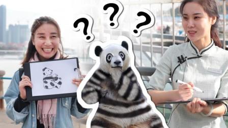 中国街头测试给大熊猫涂色 各种结果不忍直视 43