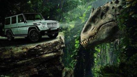 恐龙动画片 恐龙当家 铁拳恐龙 恐龙大破坏 恐龙玩具视频