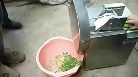 饺子皮视频昌都切菜机视频 小型切菜机价格及图片 切丁机 切片机切菜机视频厂家