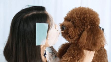 美女竟然被小狗强吻!