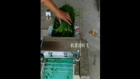 我爱发明甘南切菜机视频 小型切菜机价格及图片 切丁机 切片机切菜机视频厂家