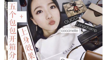 【大佬甜er】五个包包开箱分享+上身效果! | GUCCI | CÉLINE | coccinelle | Longchamp |