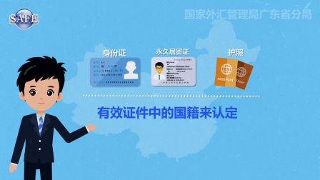 枫岚动漫系列《国际收支统计申报》解读篇